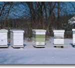 Apiary equipment